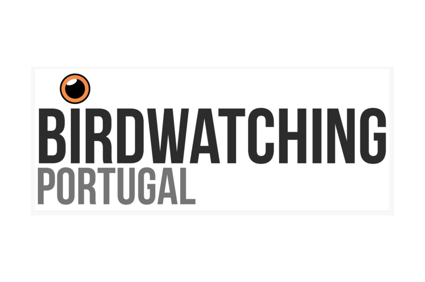 birdwatching-38